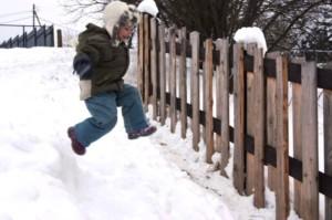 Зимнее утро в собачьей деревне 2018 у Сергея Томилова на dogrf.ru